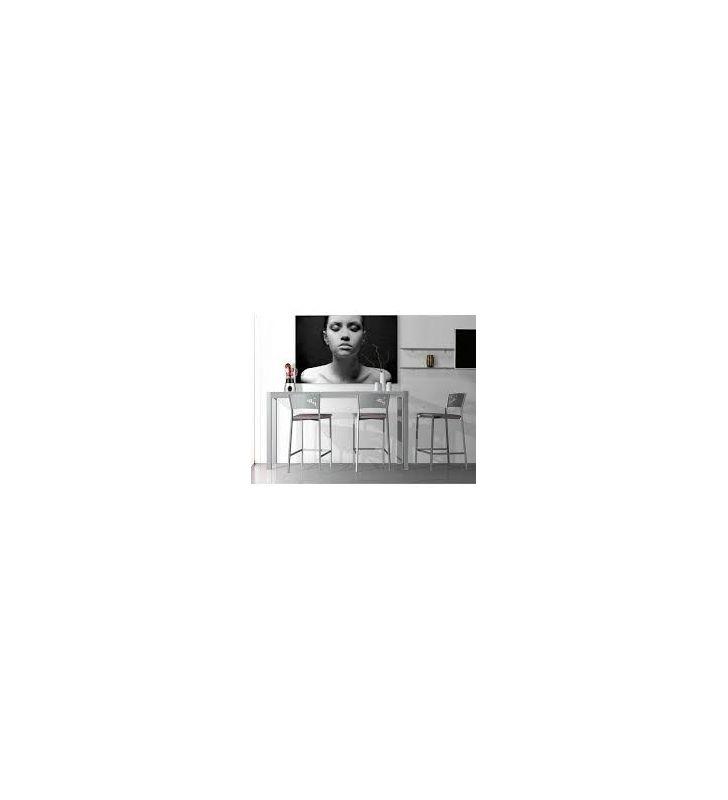 mostrador-alargado-estrecho-mesa