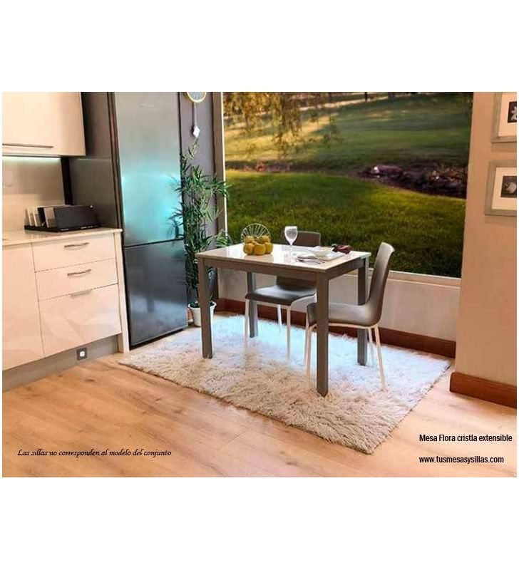 Conjunto-mesa-sillas-cristal