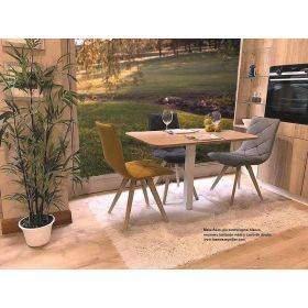 modèles de tables de cuisine fixes ou extensibles